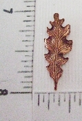 (Package Of 12) Small Oak Leaf (Copper Ox)