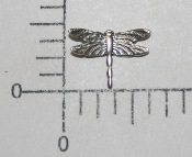 "(Package Of 12) 1/2"" Dragonfly - NR (Matte Silver Ox)"