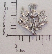 12 Pc Thistle w/ Leaves (Matte Silver Ox)