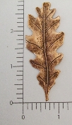 (Package Of 12) Large Oak Leaf (Copper Ox)