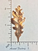 32565 - 12 Pc Large Oak Leaf Brass Jewelry Finding Copper Ox